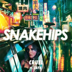 snakehips zayn cruel