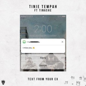 tinie tempah tinashe text from your ex